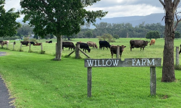 Willow-Farm wedding venue